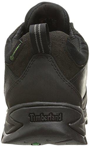 Timberland MT Maddsen Low WP Calzado para senderismo negro