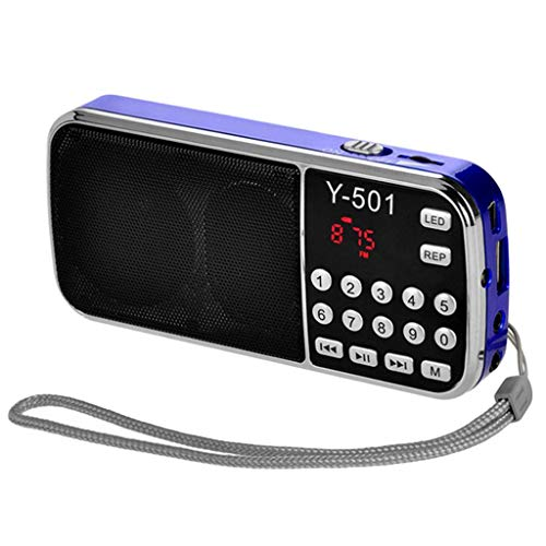 XFENGUS Portable FM Radio Speaker Receiver Music Player Sound Box Support TF Card USB AUX Input from China (Color : Black) from Generic