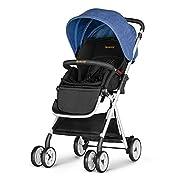 Besrey Lightweight Baby Stroller Foldable Infant Baby Stroller - Blue