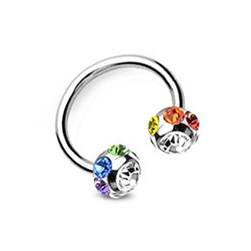 (Multi Gem Horseshoe Barbell) - Navel Belly Ring, Eyebrow, Nipple, etc. Gay and Lesbian Pride Body Jewelry - LGBT Belly Button Navel Rings. ()