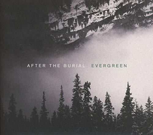 Evergreen (Best Brutal Death Metal Albums)