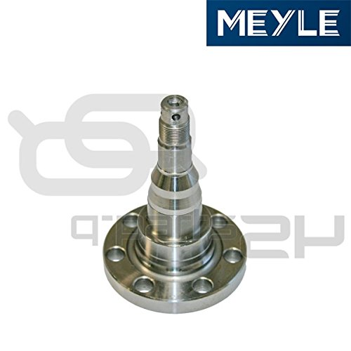 (Meyle 100 501 1010 Stub Axle, wheel)
