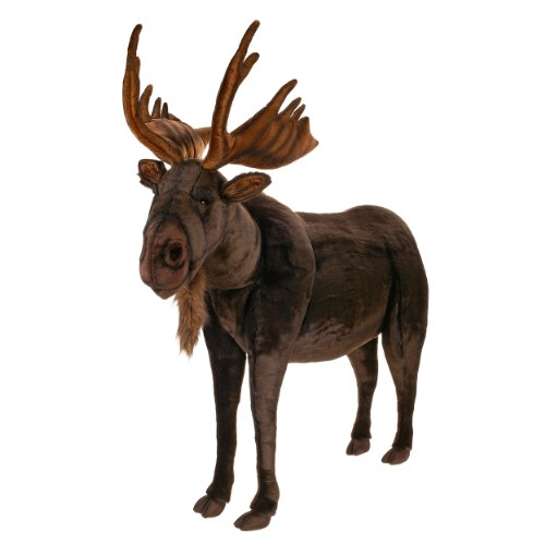 Size Of A Moose - 4