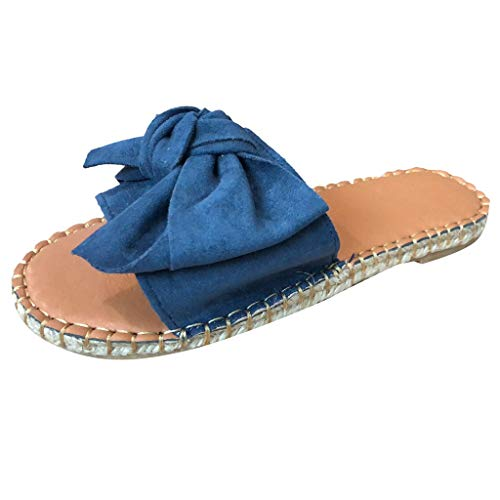 Dressin Ladies Shoes Women Summer Bow Knot Slipper Flats Beach Slippers Open Toe Sandals Rome Shoes for Women Blue