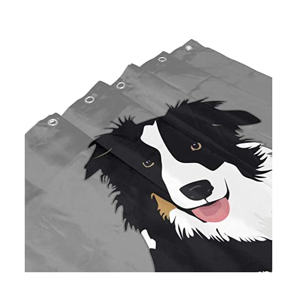 """Perfect Appearance Border Collie Shower Curtain 7-12 Grommet Holes Waterproof Thick Bathroom Plastic Shower Curtains 48"""""""" W X 72"""""""" H No Chemical Odor Rust Proof Grommets 4"""