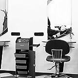Giantex Salon SPA Beauty Rolling Trolley
