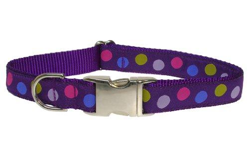 Sassy Dog Wear 18-28-Inch Purple/Multi Dot Dog Collar, Large