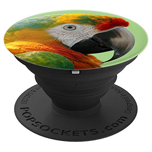 Parrot Macaw Bird Nature Wildlife Bright - PopSockets, used for sale  Delivered anywhere in USA