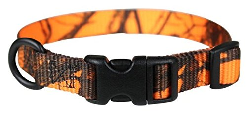 OmniPet Kwik Klip Adjustable Nylon Pet Collar, Small, Mossy Oak Blaze Orange Camouflage (Camouflage Buckle)