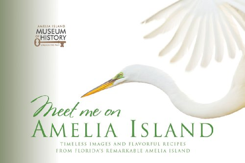 Best amelia island travel guide list