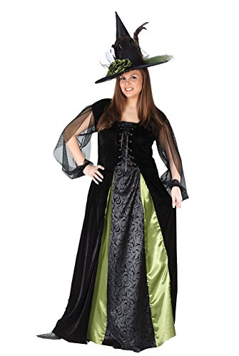 Fun World Women's Plus Size Goth Maiden Witch