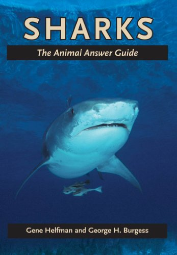 Sharks (The Animal Answer Guides: Q&A for the Curious Naturalist) (Animal Quiz Questions And Answers For Adults)