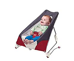 Tiny Love Take Along Baby Bouncer, Greyred