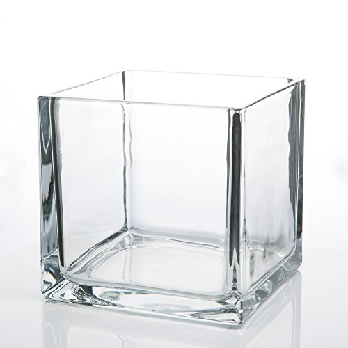 Richland Square Glass Cube Vase 6