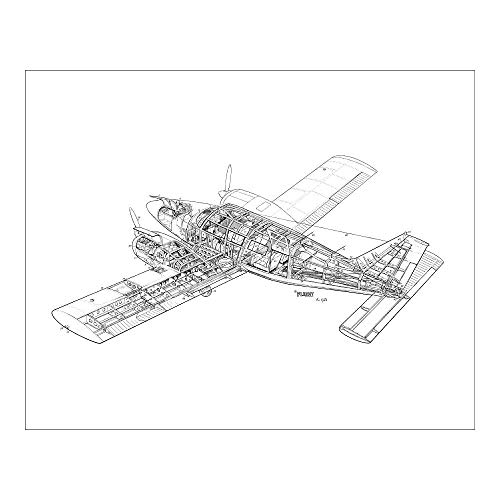 Media Storehouse 20x16 Print of Piper PA-34 Seneca for sale  Delivered anywhere in USA