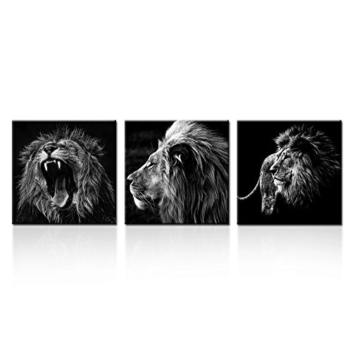 Kreative Arts - 3 Panels Lion King Black and White Canvas Prints Wall Art Modern Painting Wall Pictures for Living Room Office Decoration Ready to Hang (16x16inchx3pcs/set)