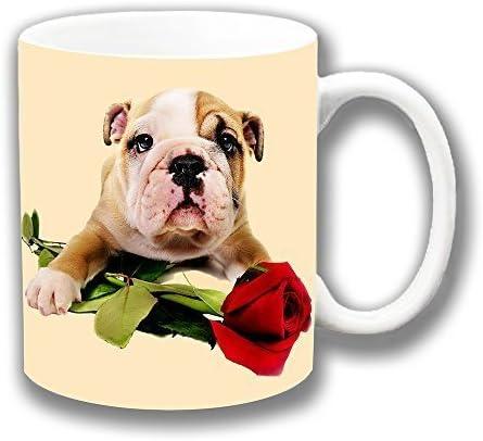 Bulldog Inglés CACHORRO CON ROSA ROJA , Valentine, amor ...