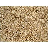 2kg SHADY AREA UNDER TREES LAWN GRASS SEED SHADE - Supplied by Maltby's of Hull