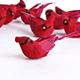 Factory Direct Craft Package of 12- Artificial Bright Red Sitting Cardinal Mushroom Birds for Crafting, Floral Arranging, and Embellishing