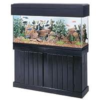 Aquariums Product