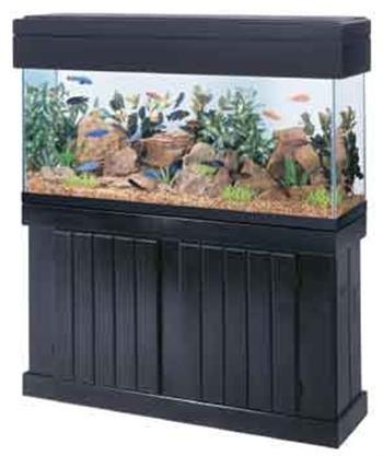 All Glass Aquarium AAG54210 Pine Canopy, 48-Inch