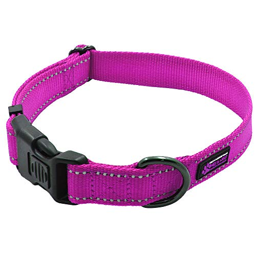 Max and Neo NEO Nylon Buckle Reflective Dog Collar - We Donate a Collar to a Dog Rescue for Every Collar Sold (Medium, Pink) ()