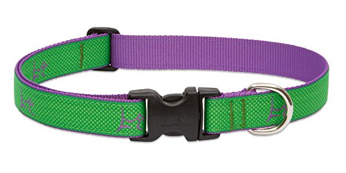 1 Inch Adjustable Collar - LupinePet Club 1
