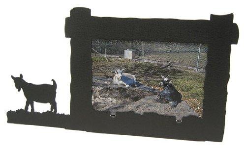 Innovative Fabricators Pygmy Goat 4X6 Horizontal Picture ...