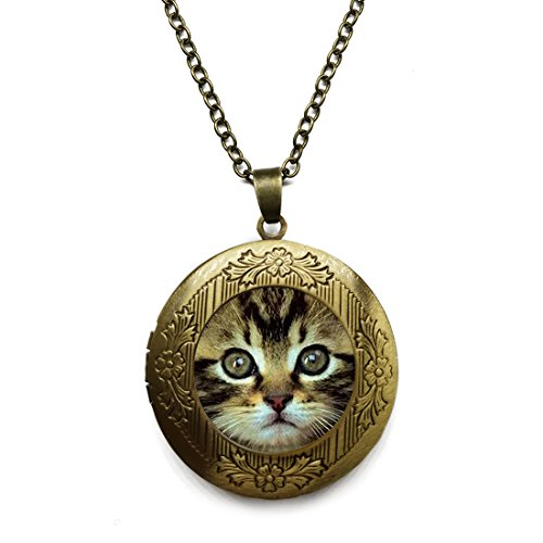 Vintage Bronze Tone Locket Picture Pendant Necklace Cute Cat Face Glass Dome Cabochon Included Free Brass Chain Gifts Personalized