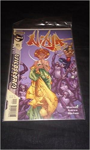 Ninja Boy #5: Allen Warner; Ale Garza; Dan Norton: Amazon ...