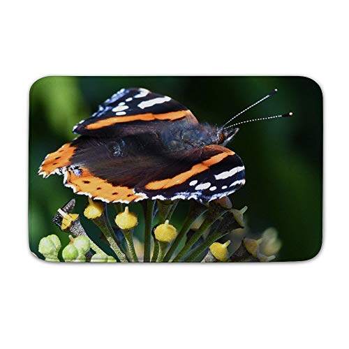 Welkoom Large Front Door Mat Red Admiral Vanessa Atalanta Butterfly Non Slip Home Floor Entrance Doormat Indoor/Outdoor (20, 32)]()