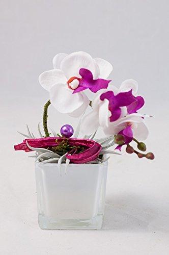 Centro de mesa con orquídea en un vaso blanco - arreglo floral con ...