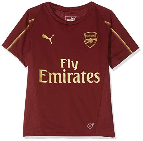 Replica Arsenal Ball Soccer - PUMA 2018-2019 Arsenal Training Football Soccer T-Shirt Jersey (Red) - Kids