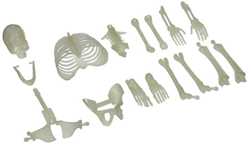 us-toy-ustmu75-16-piece-glow-in-the-dark-skeleton-box-of-bones-action-figure