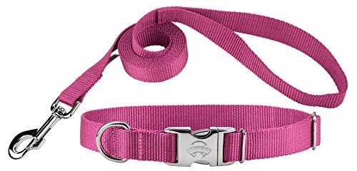 (Country Brook Design | Premium Nylon Dog Collar and Leash - Rose - Small)