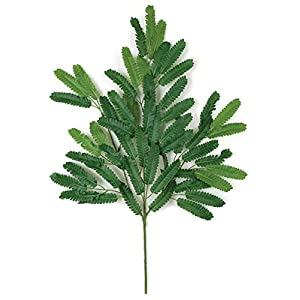27 Inch Mimosa Branch (Sold by the Dozen) FireSafe Foliage Fire Retardant 2