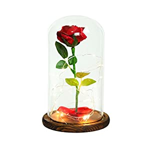 """Beauty and the Beast"" Everlasting Red Rose Flower Led Light with Fallen Petals in a Glass Dome on a Wooden Base 1"
