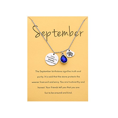 End Gift Card - A True Friendship Stainless Steel Birthstone Necklace Message Card