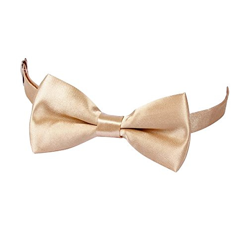 Polyester Bow Pre Champagne Fashion Bowtie Wedding Fashion Tied Plain Tie Verlike Men's Suits Tie qwFxBXn6
