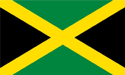 Shoe String King SSK Jamaica Outdoor Flag - Large 3' x 5', W