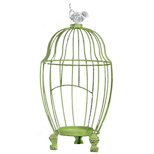 striking metal bird cage
