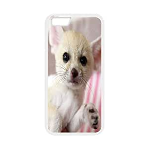 Jumphigh Cute Fennec Fox iPhone 6 Cases Fennec Foxes Arctic Foxes and other Exotic Pets for sale. Protective Cute For Girls, Iphone 6 Case 4.7, [White]