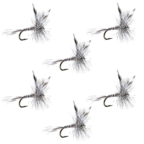 - The Fly Fishing Place Mosquito Classic Trout Dry Fly Fishing Flies - Set of 6 Flies Size 14