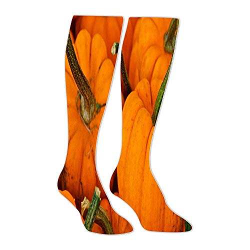 Harvest Pumpkin Men'S High-Bar Exercise Pressure Muscle Compression Socks Perfect For Use By ()