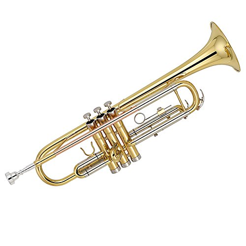 Kaizer TRP-3000LQRC 3000 C Series Standard B Flat Bb Trumpet - Gold