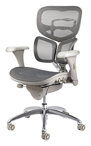 Workpro Office Chair on case office chairs, work pro 436534 od office chairs, cheap office chairs,