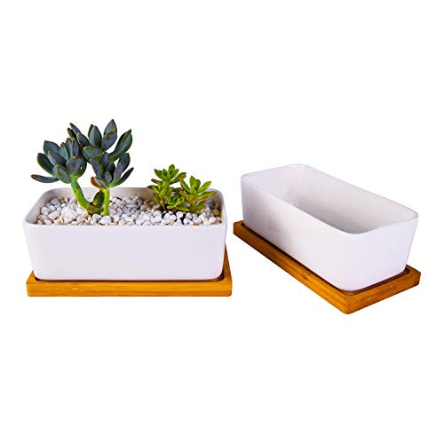 6.5 inch Ceramic Rectangle Succulent Planter with Bamboo Saucer Tray, Set of 2, White Modern Indoor Cactus/Flower Plant Pot with Drainage, Decoration for Desks/Bookshelves / Window Sills (A) by Opsuper