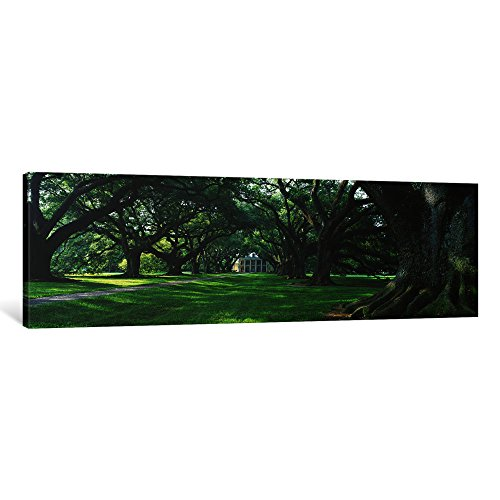 iCanvasART 1 Piece USA, Louisiana, New Orleans, Oak Alley Plantation, Plantation Home Through Alley of Oak Trees Canvas Print by Panoramic Images, 1.5 by 36 by 12-Inch