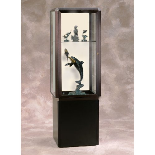 (Waddell 448PB-BZ-CH Prominence Spotlight 24 x 72 x 24 in. Unlighted Tower Case with Locking Black Base for Interior Storage44; Plaque Back - Dark Bronze)