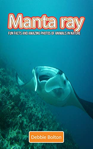 Manta ray: Fun Facts and Amazing Photos of Animals in ()